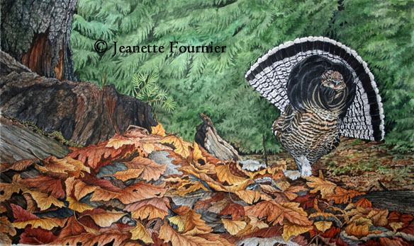 ruffed grouse painting