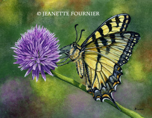 butterly painting