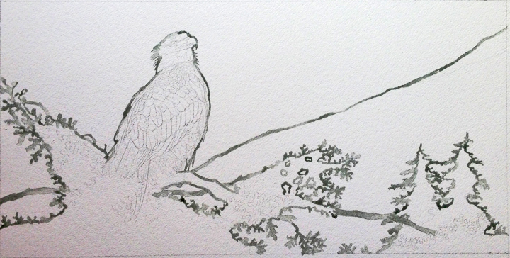 Eagle painting WIP
